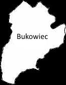 bukowiec1