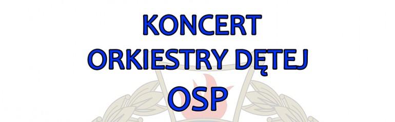 Koncert Orkiestry Dętej OSP z Białej Rawskiej
