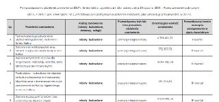 Plan postępowań o udzielenie zamówień na 2017 r. Gminy Solina